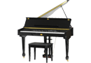 Digital Pianos & Keyboards