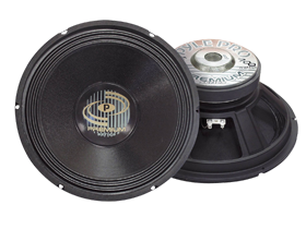 Pro Audio 12 Inch PA Speaker Replacements
